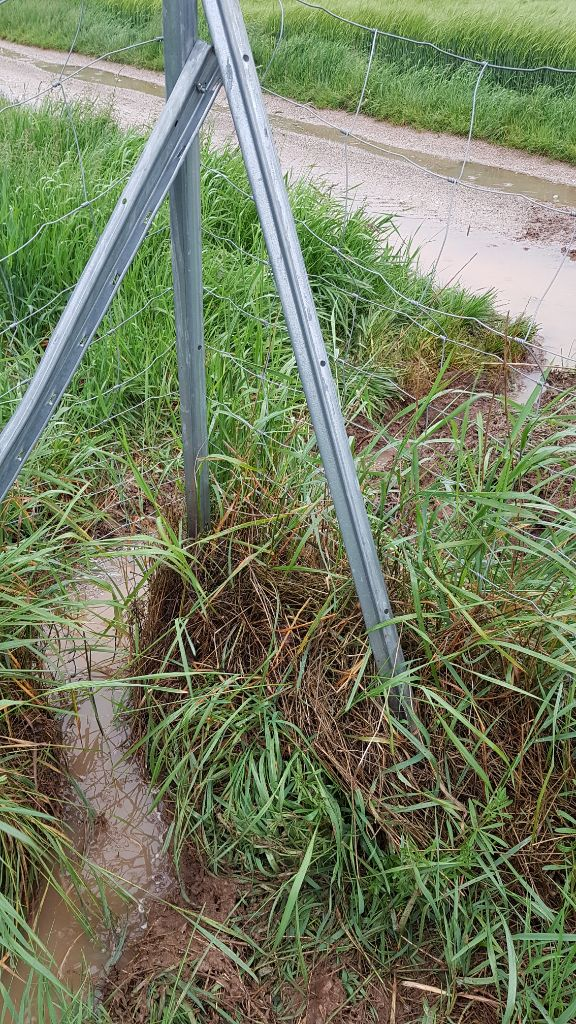 Wassermanagement, Wasserretention